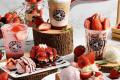 โปรโมชั่น TOM N TOMS COFFEE เทศกาล สตรอเบอร์รี่เกาหลี Strawberry Fever ที่ ทัม เอ็น ทัมส์ คอฟฟี่ วันนี้
